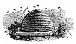 Sugarloaf Beehive
